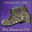 """Big Shoes to Fill"" by Watermelon Slim"